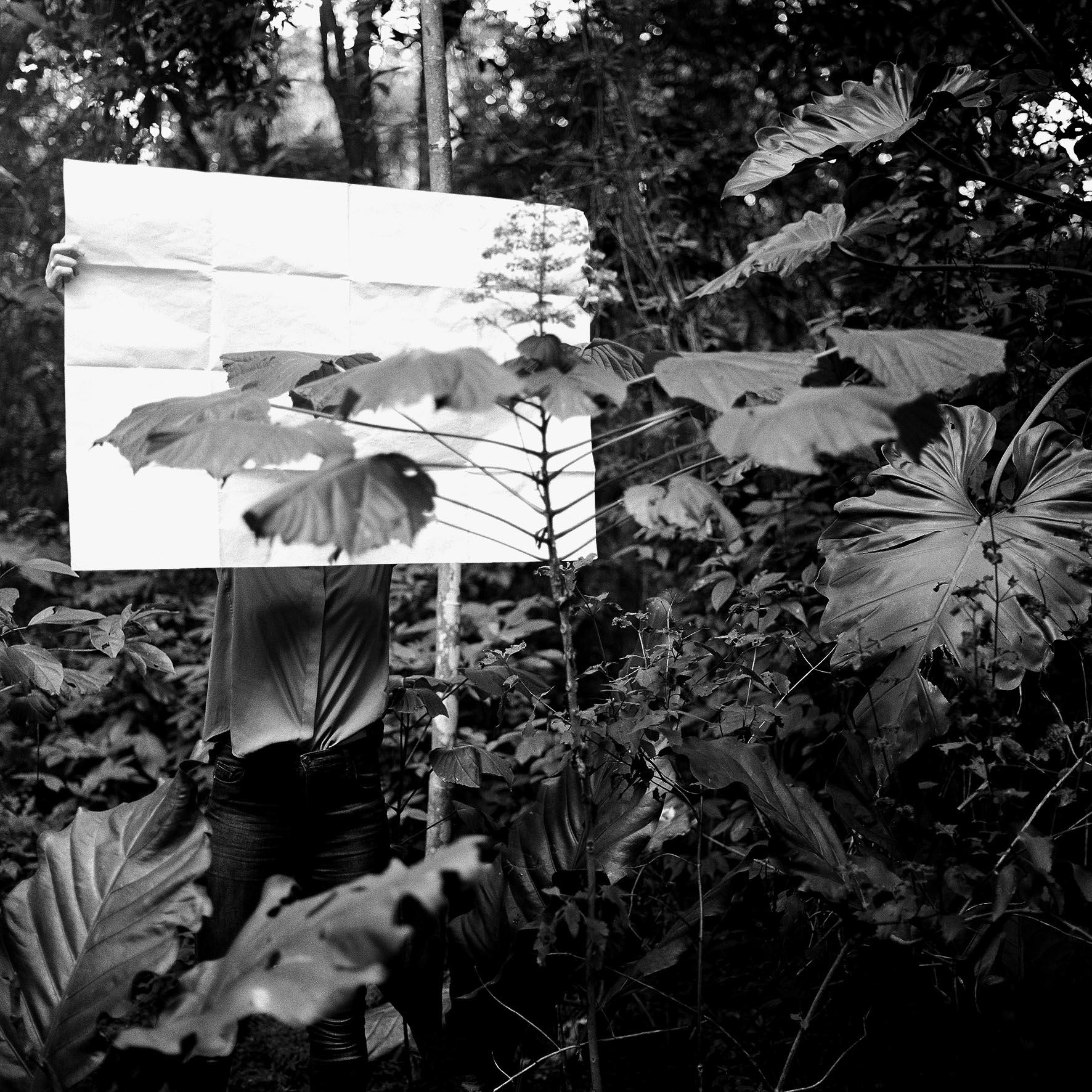 Herbier [V] cópia.jpg