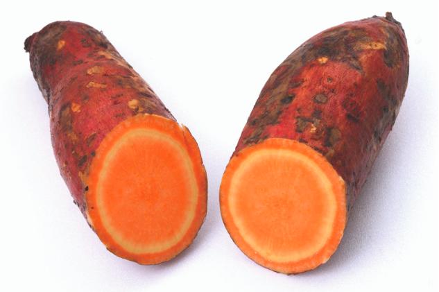 Sweet Potato -
