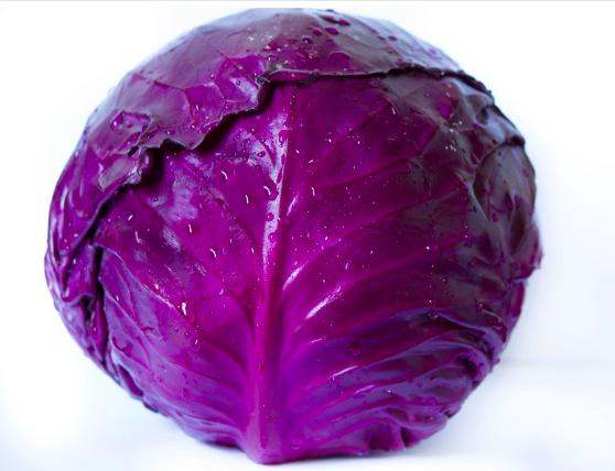 Purple Cabbage -