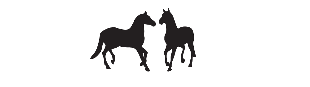 KarinGeishofer_HaniundFrida_smallhorses.png