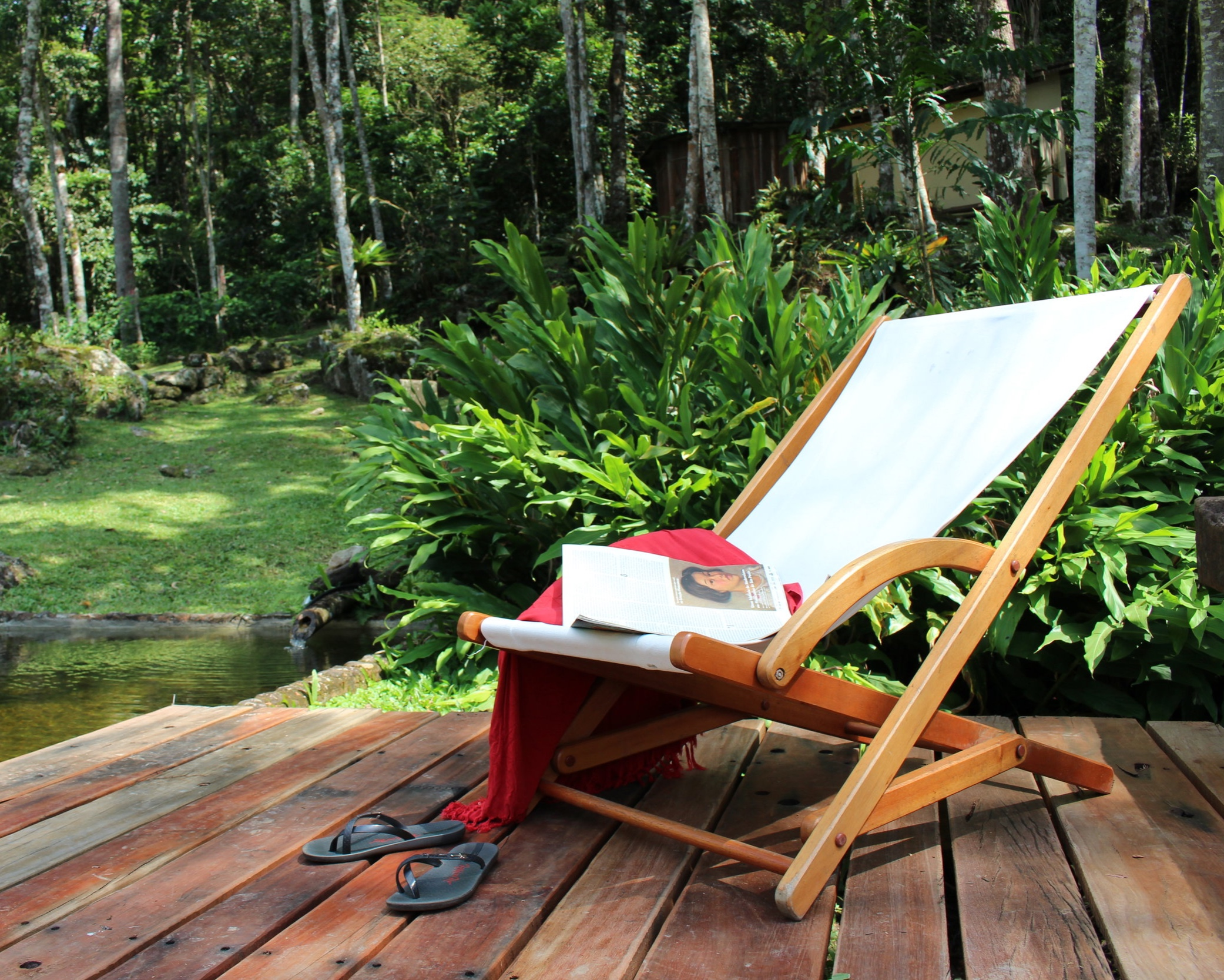 Nova Friburgo - Beautiful Nature Lodge in the Atlantic Rainforest.A beautiful 5 bedroom country home in the heart of the Atlantic Rainforest, natural habitat for some 300 species, a great variety of birds and fauna, located inside the