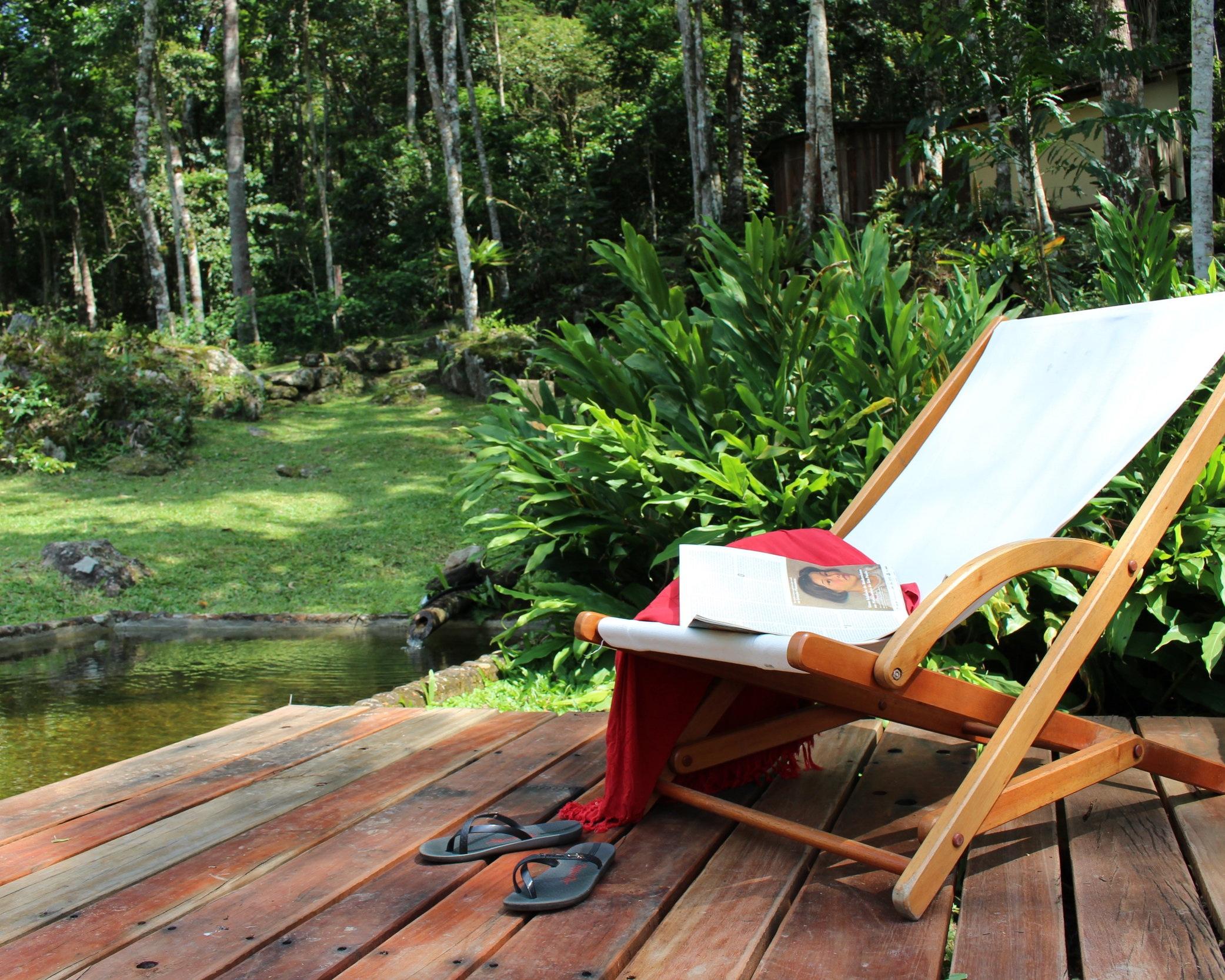 Rainforest - Beautiful Nature Lodge in the Atlantic Rainforest.