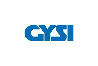 Gysi_Logo_Pantone_300C.jpg