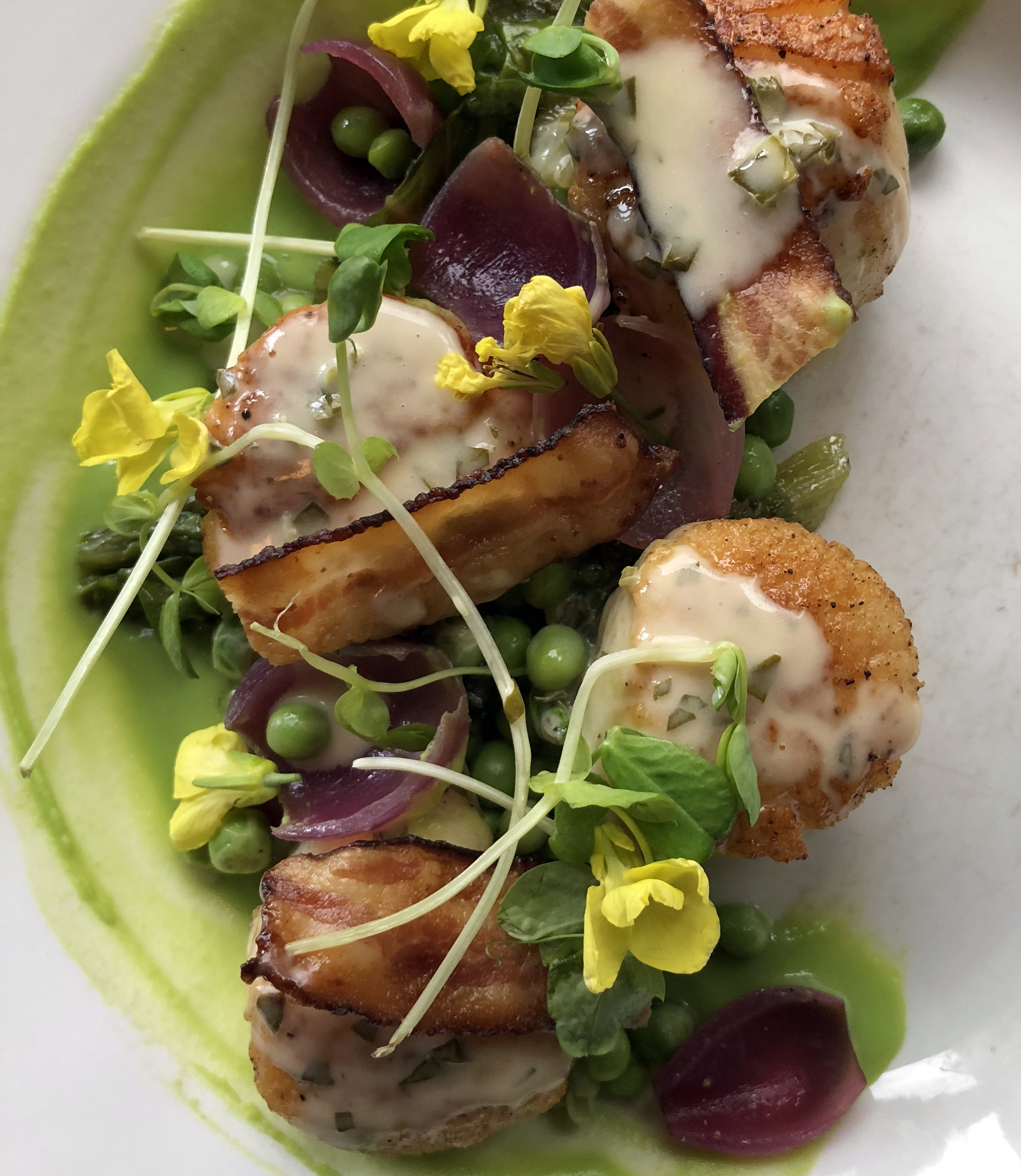 2018_4_scallops peas pickled onion bacon lemon sorrel sauce.jpg
