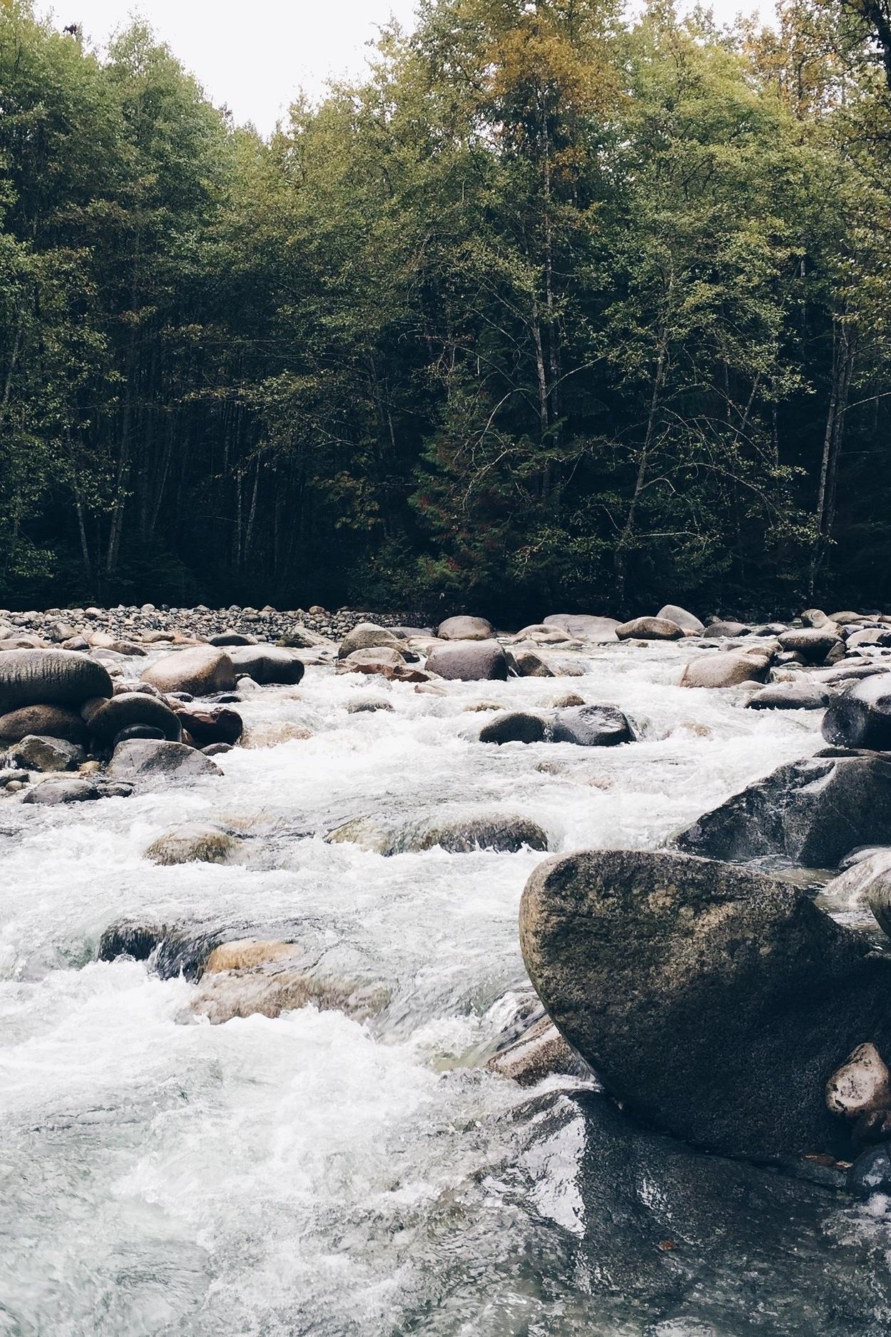 main banner river.jpg