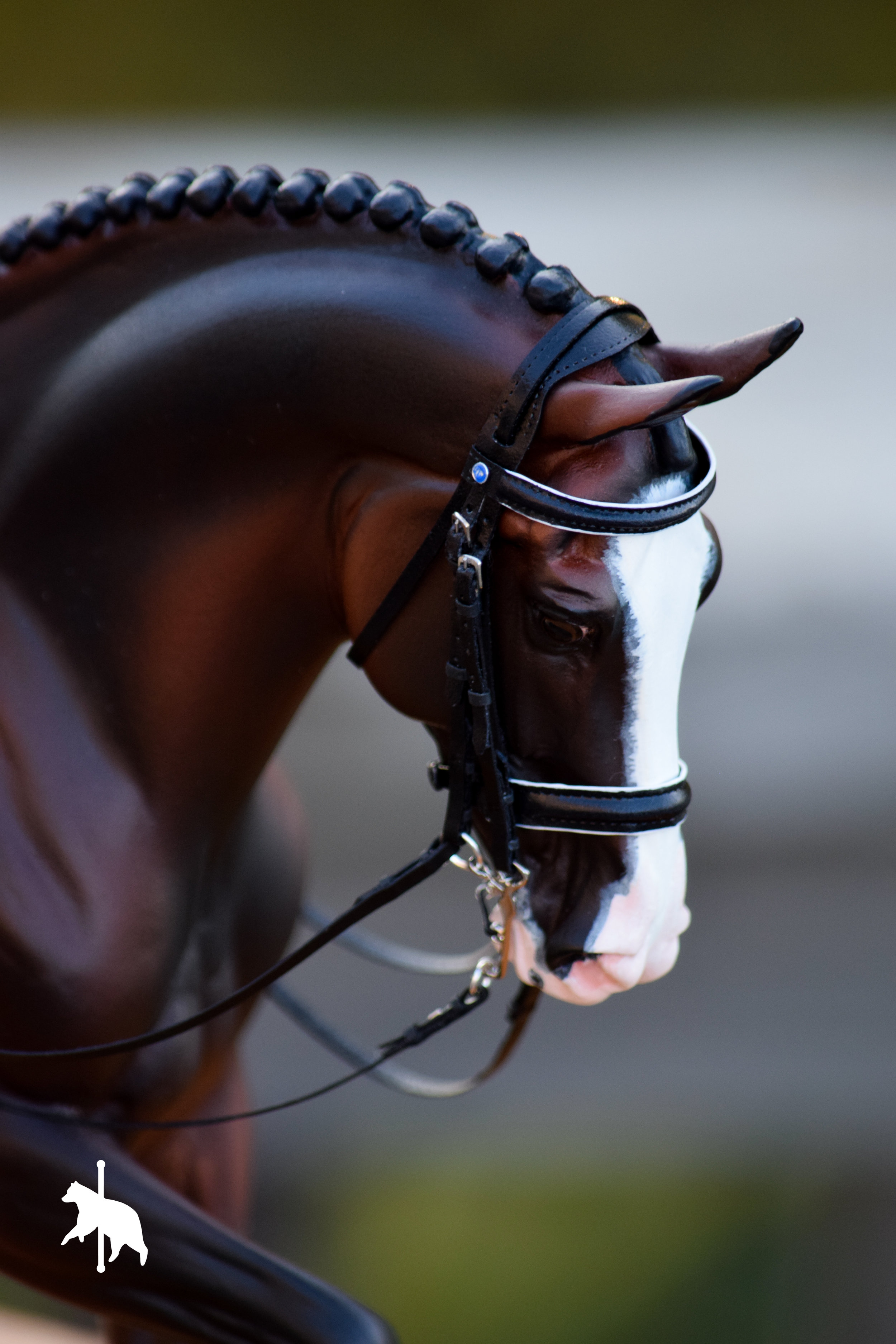 dressagebridle7.17.17WM-21.jpg