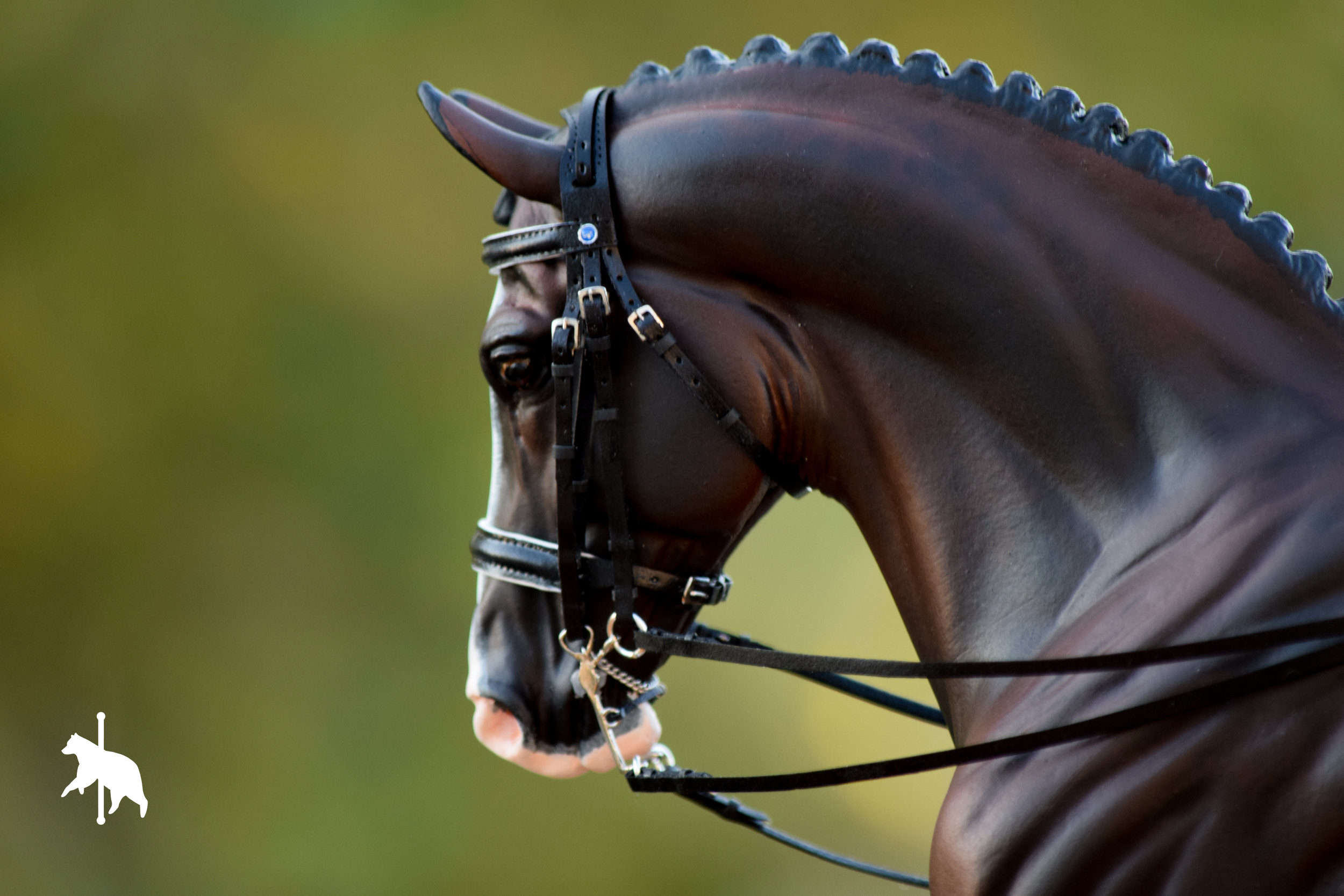 dressagebridle7.17.17WM-12.jpg