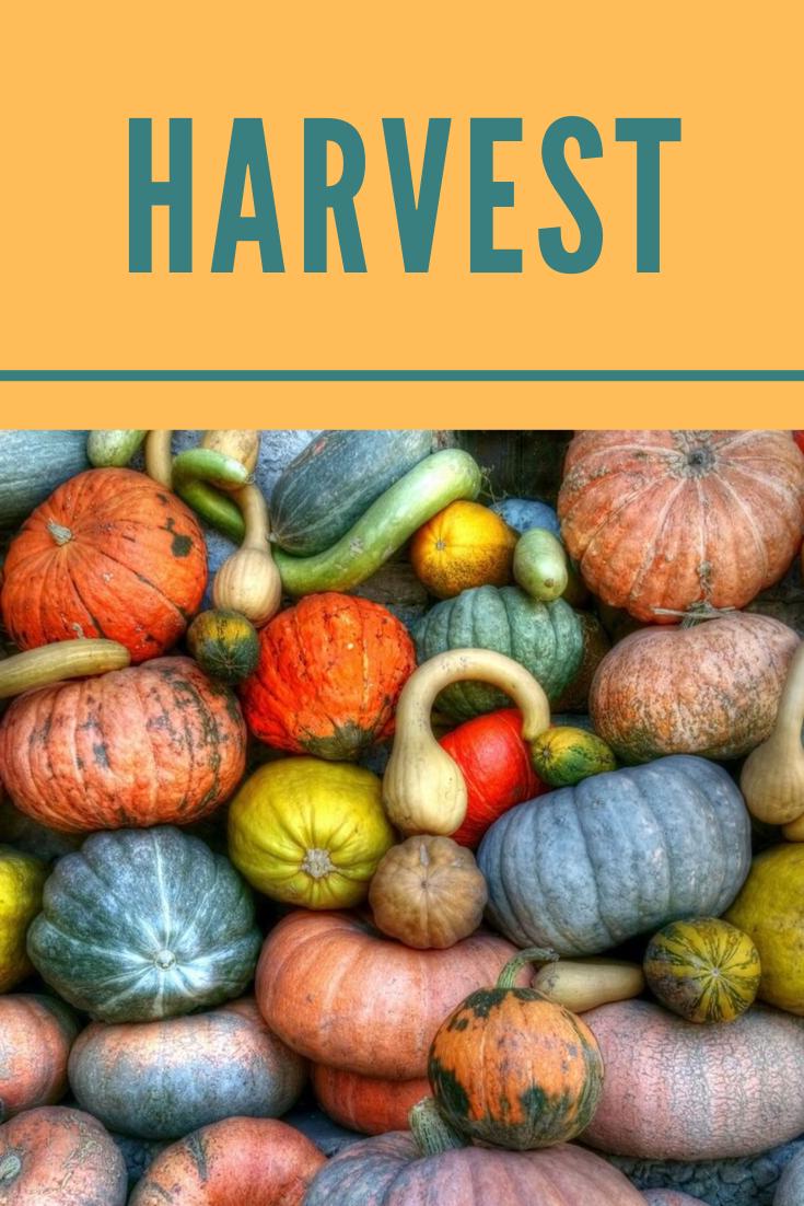 Harvest Part 1.png