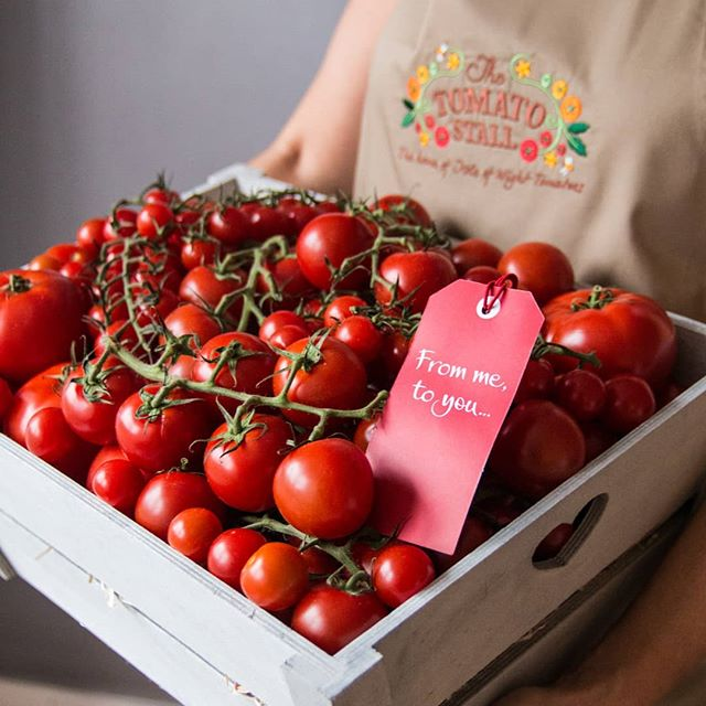 The Tomato Stall - The festival's closest neighbour! The Tomato Stall's award winning tomatoes are produced just across the road! You will find a wide variety of tomatoes in the food marquee and in our Theatre Kitchen to try and buy! Little mouthfuls of sunshine!.