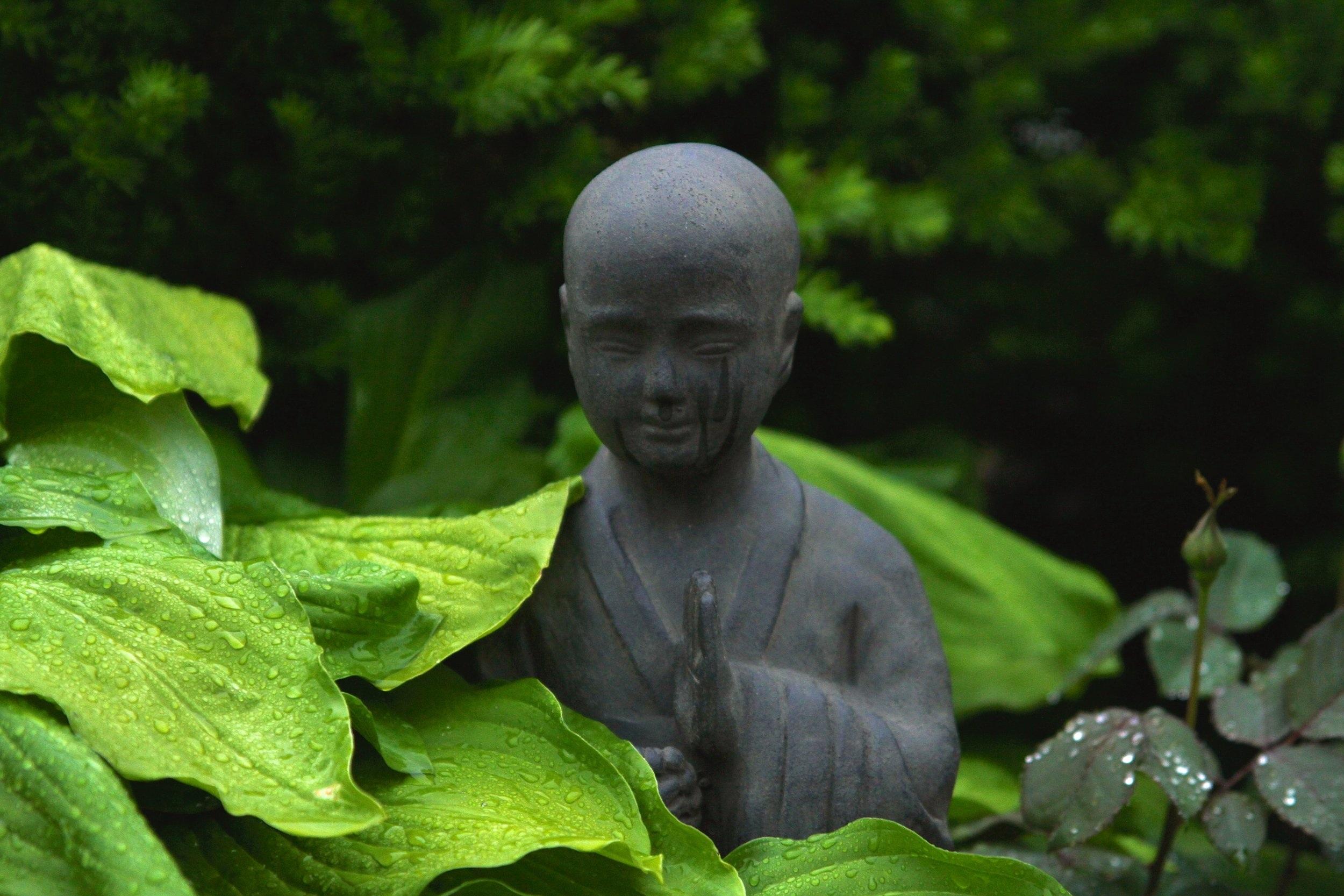 Feng Shui -