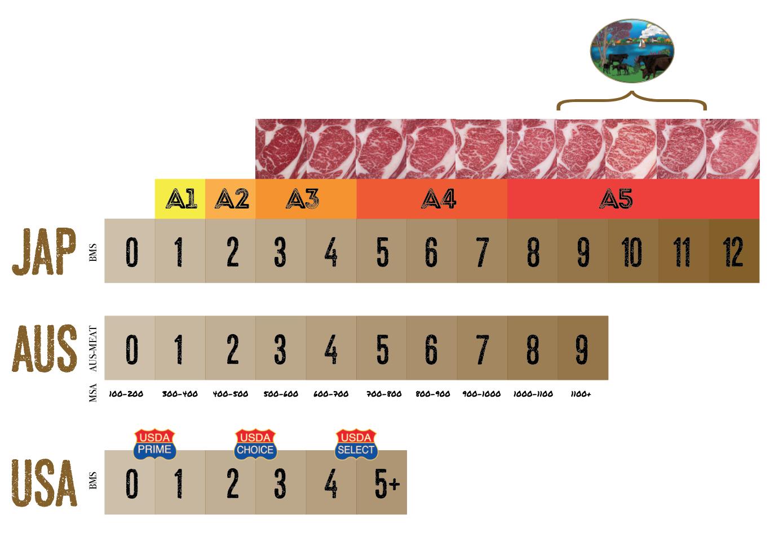 Mid Lake Wagyu - Score System.png