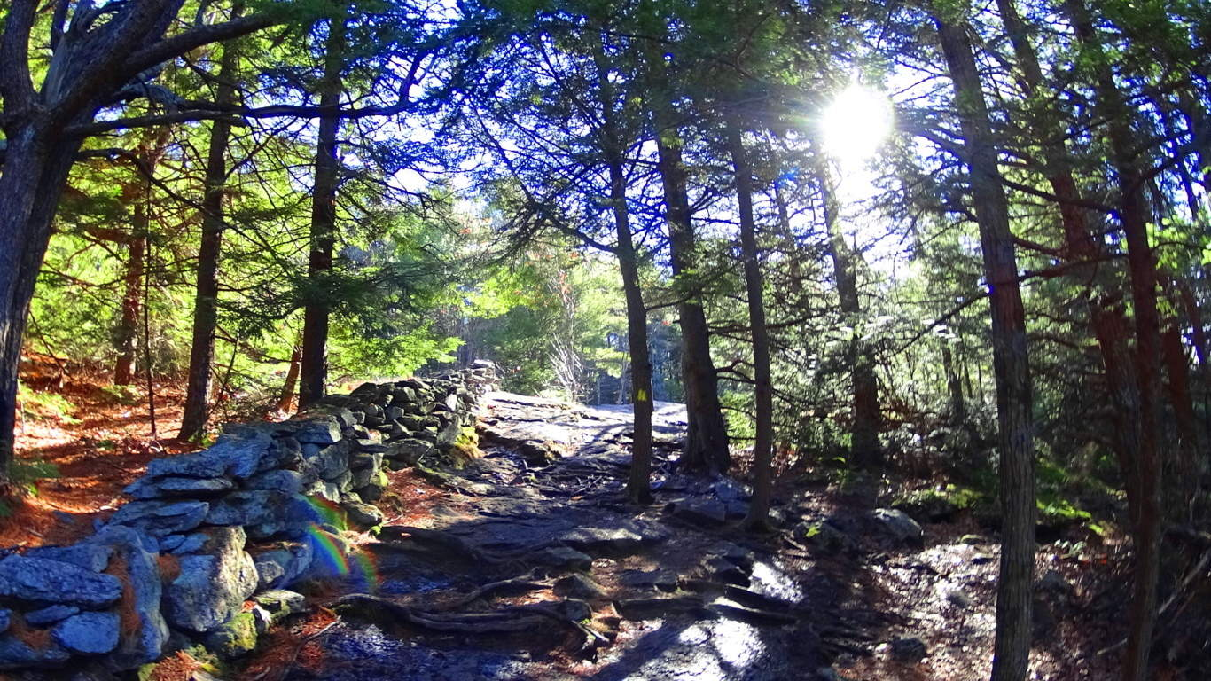 The Course - An endurance challenge that traverses the Commonwealth of Massachusetts following the Appalachian Midstate Trail during the peak of Autumn.