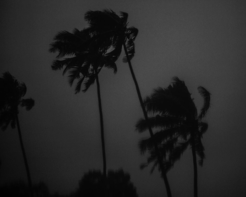 RidenourT_Samoa_LS-047.jpg