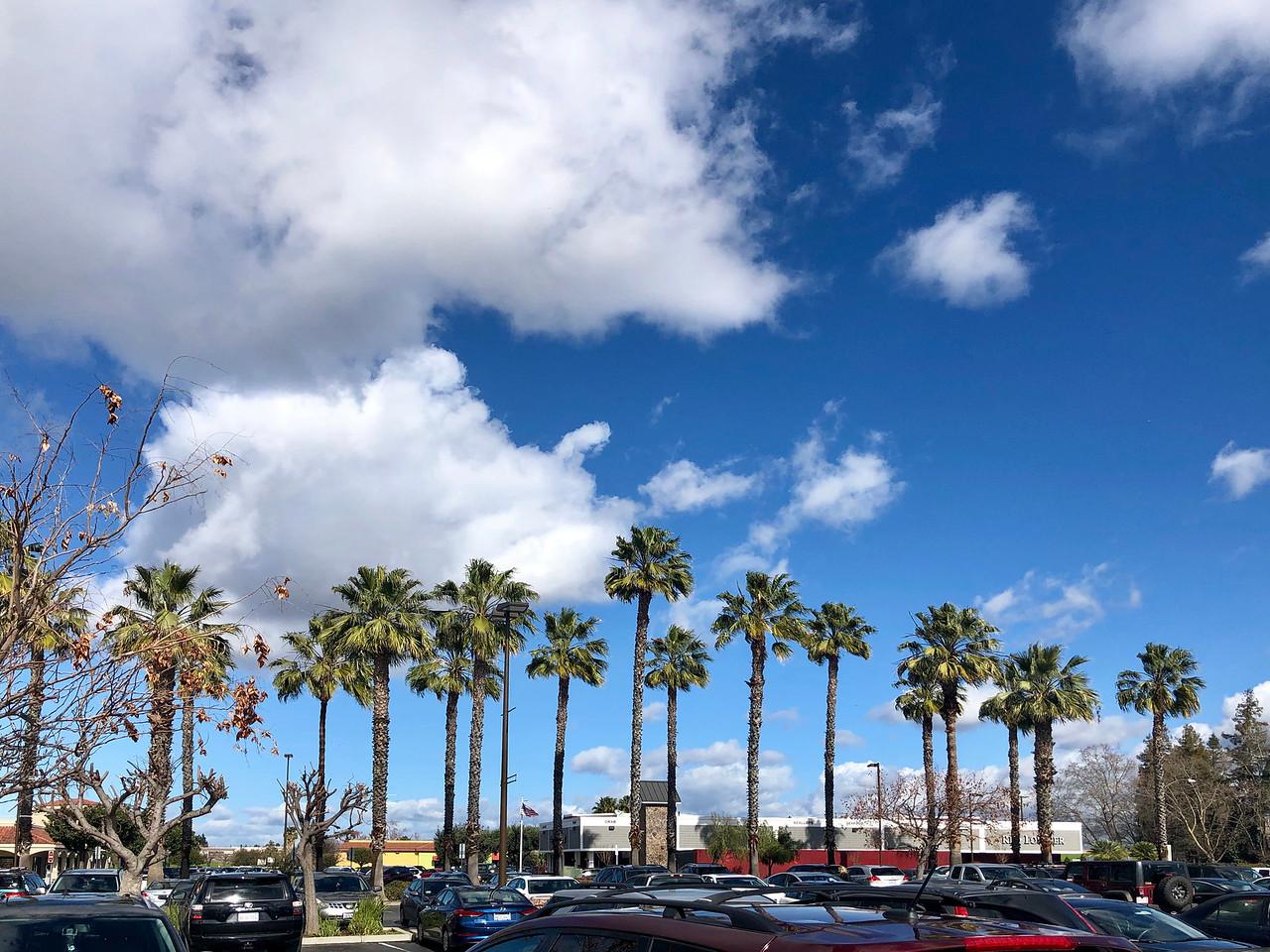 Almaden Shopping Center on Almaden Expressway San Jose Blu Skye Media-X2.jpg