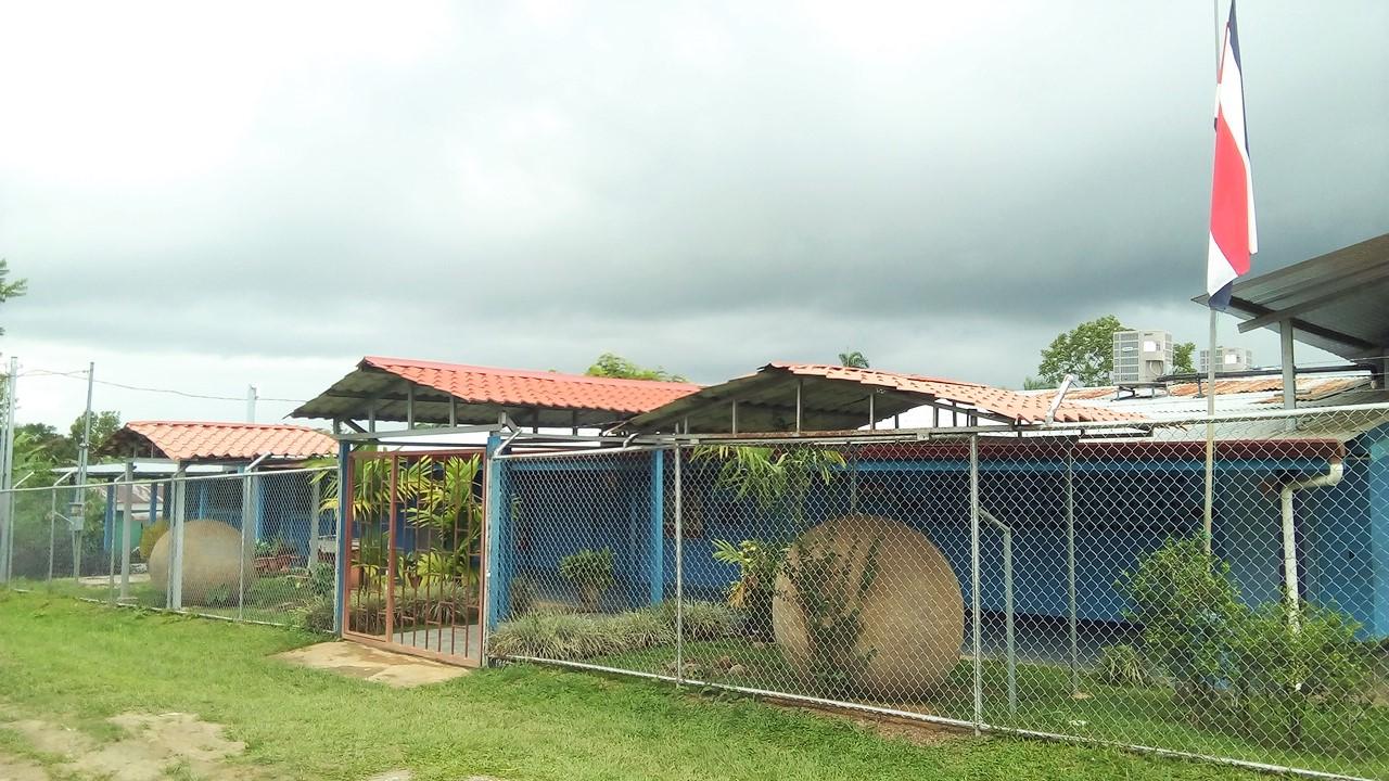 Bolas School
