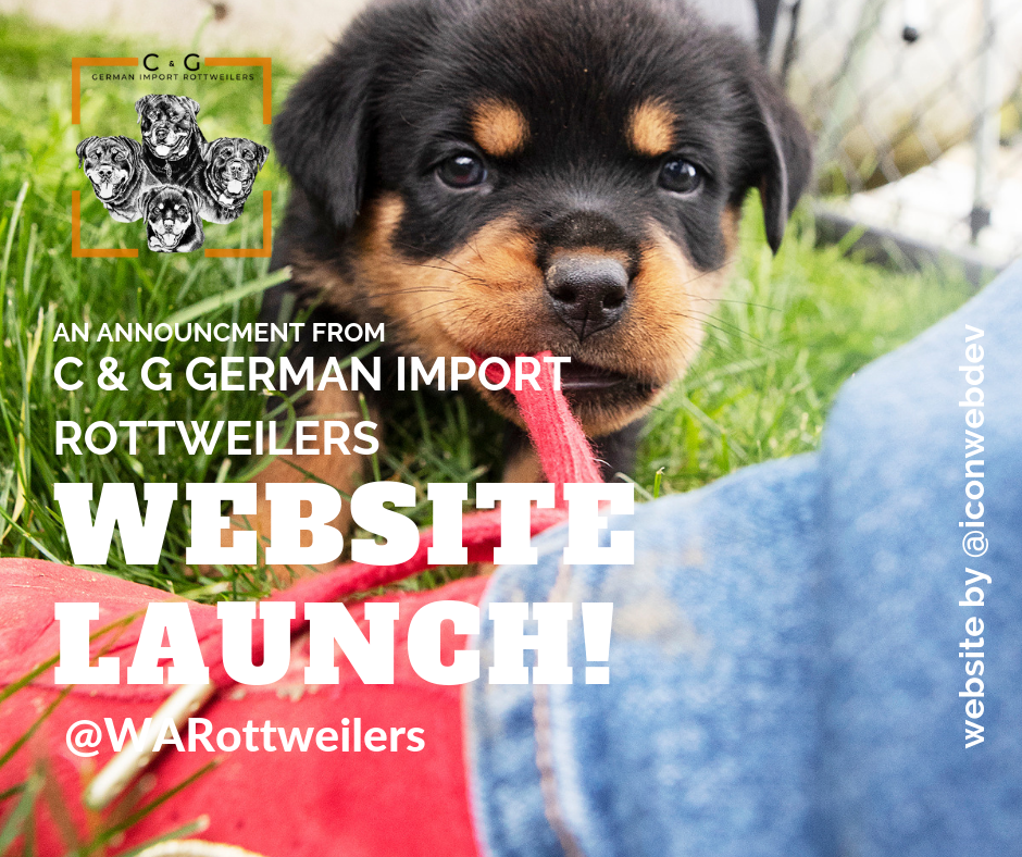C & G German Import Rottweilers (2).png