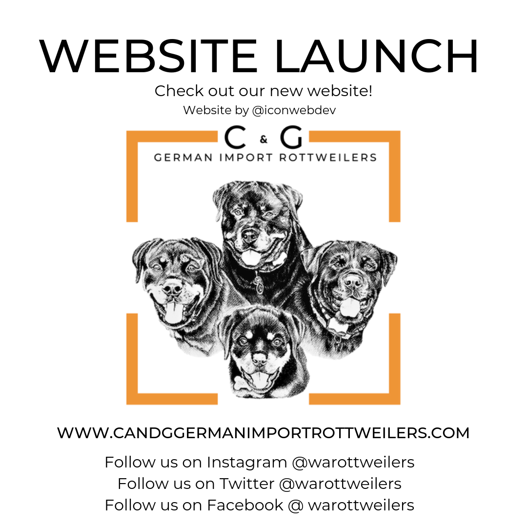 OUR WEBSITE IS LIVE!.png