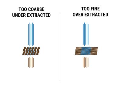 Extraction-101.jpg
