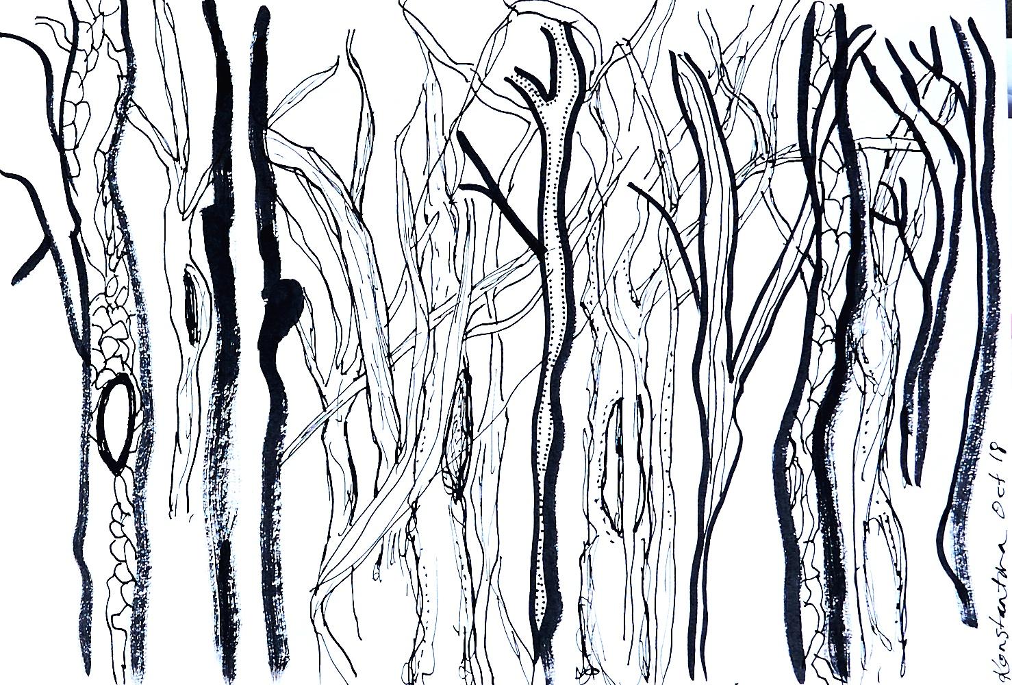 WANDER - work on paper; acrylic paint pen29.7cm x 21cmOctober 2018