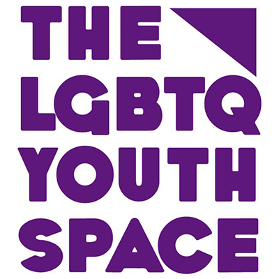 The LGBTQ Youth Space & LGBTQ Wellness