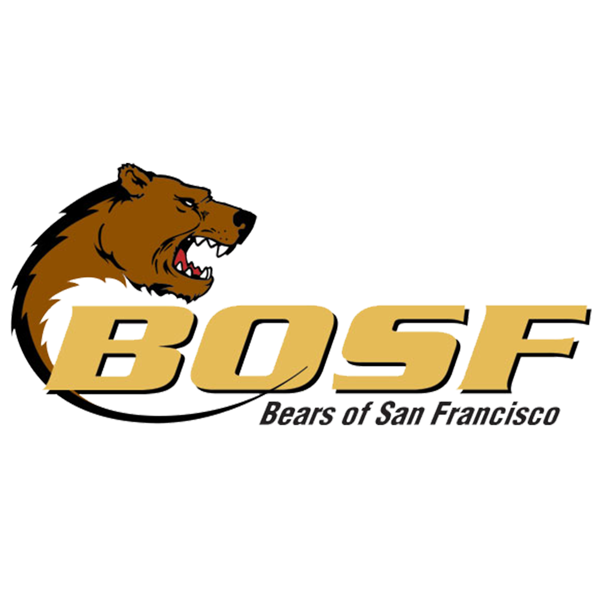 Bears of SF