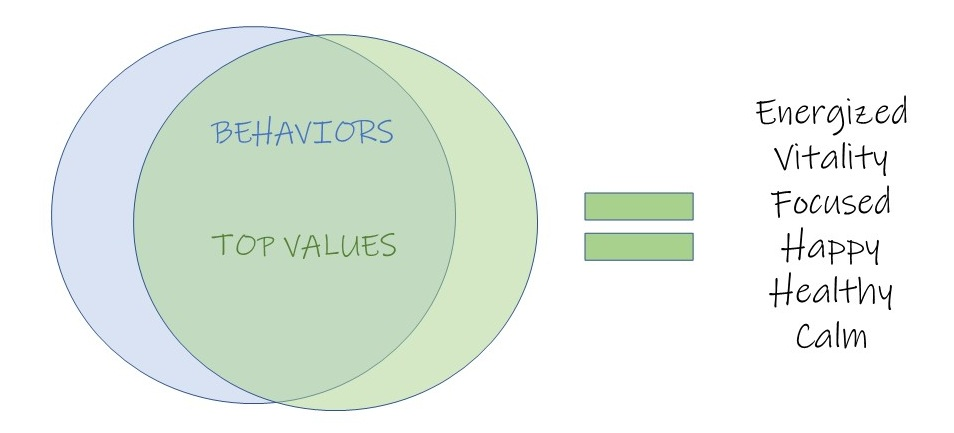 values+and+behaviors.jpg