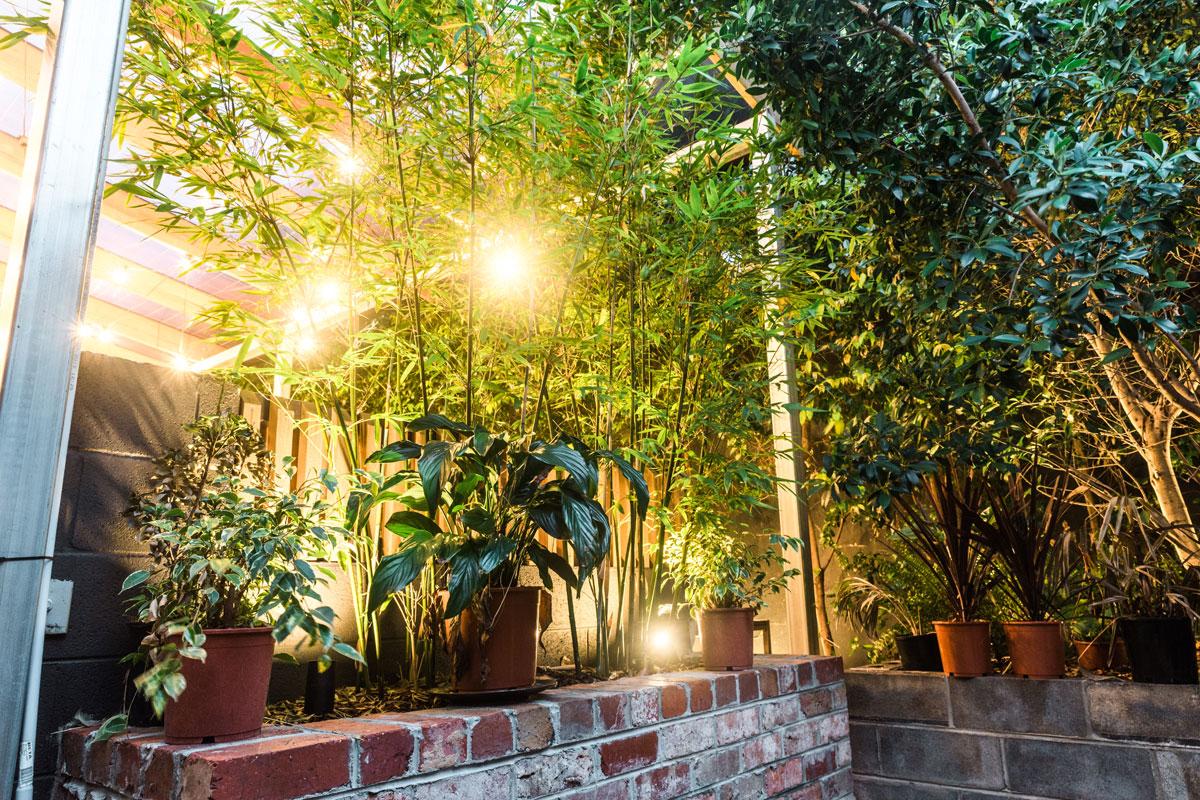 gardenbar03.jpg