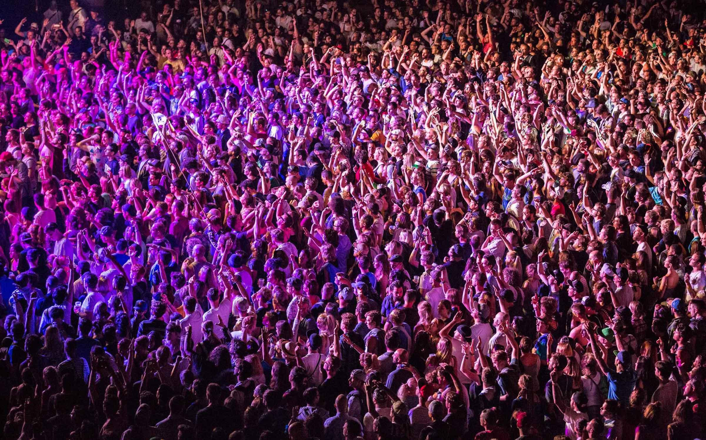 Crowed.jpg