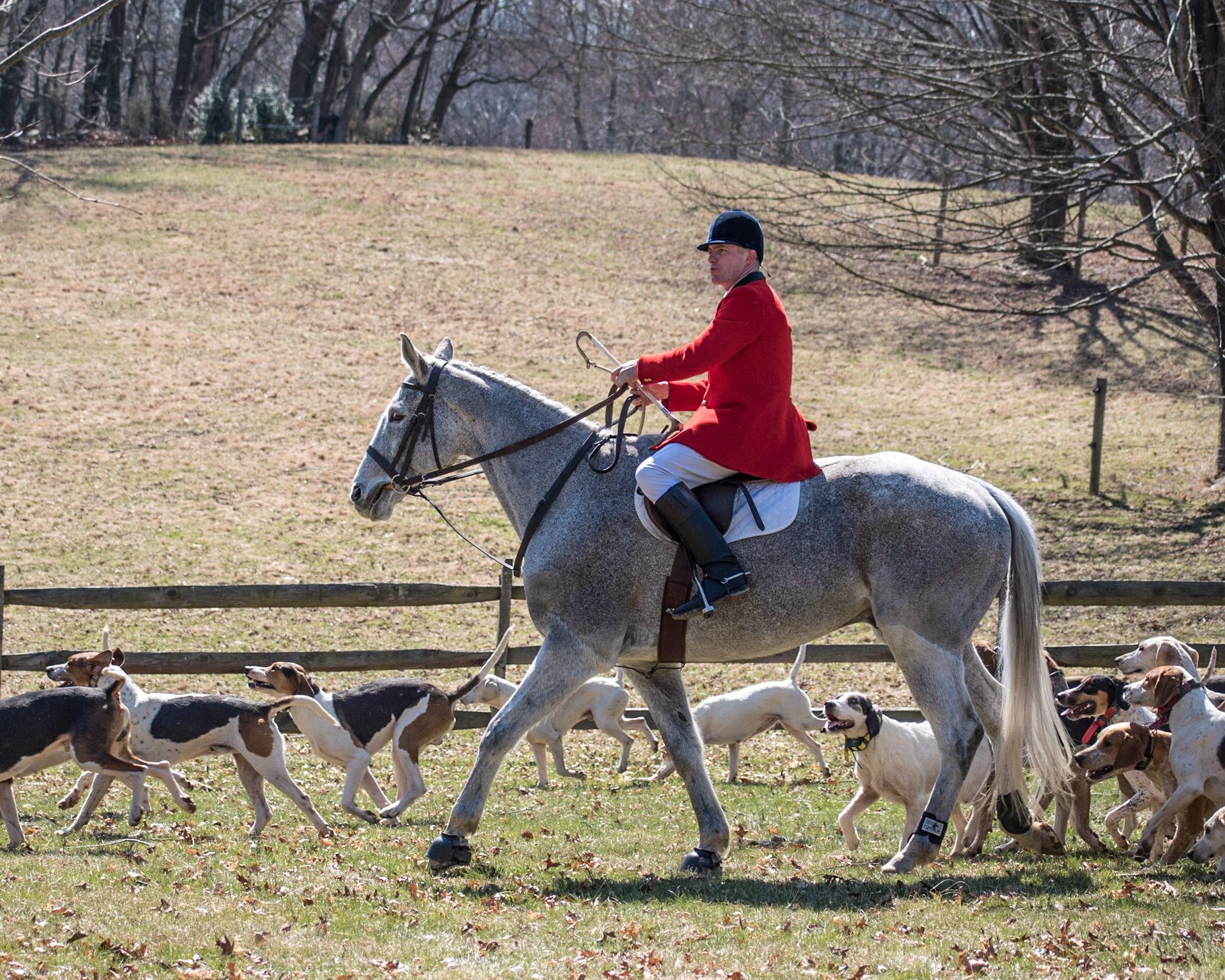 huntsman-ashley-hubbard-green-spring-valley-hounds-foxhunting.jpg