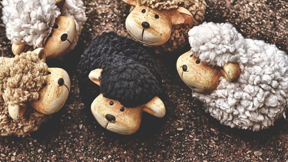 the-black-sheep-3702973_1920+pixabay.jpg