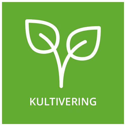 Kultivering.png