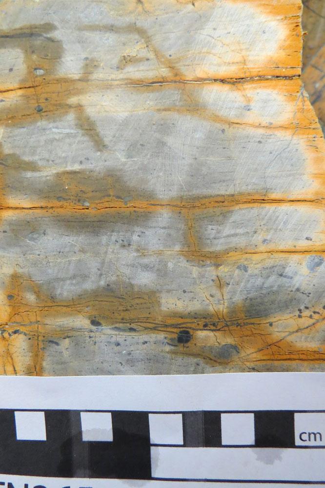 Peridotite mylonite