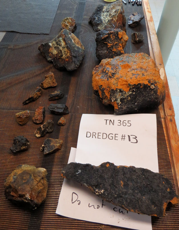 Lucky dredge 13 - every sample is a peridotite mylonite.