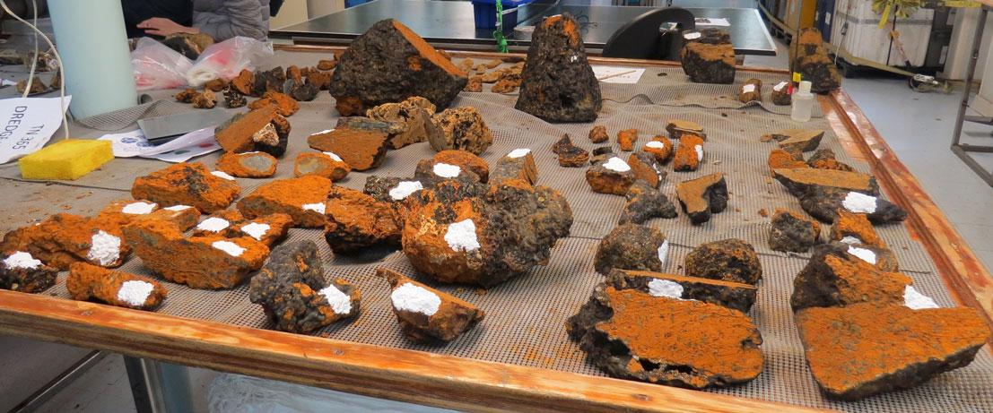 Dredge 22- surface weathered peridotite