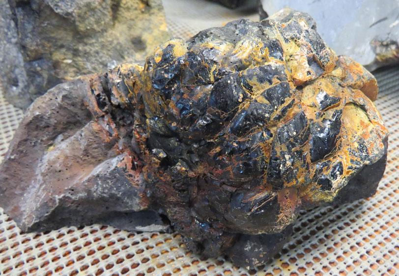 Glassy pillow basalt from dredge 27
