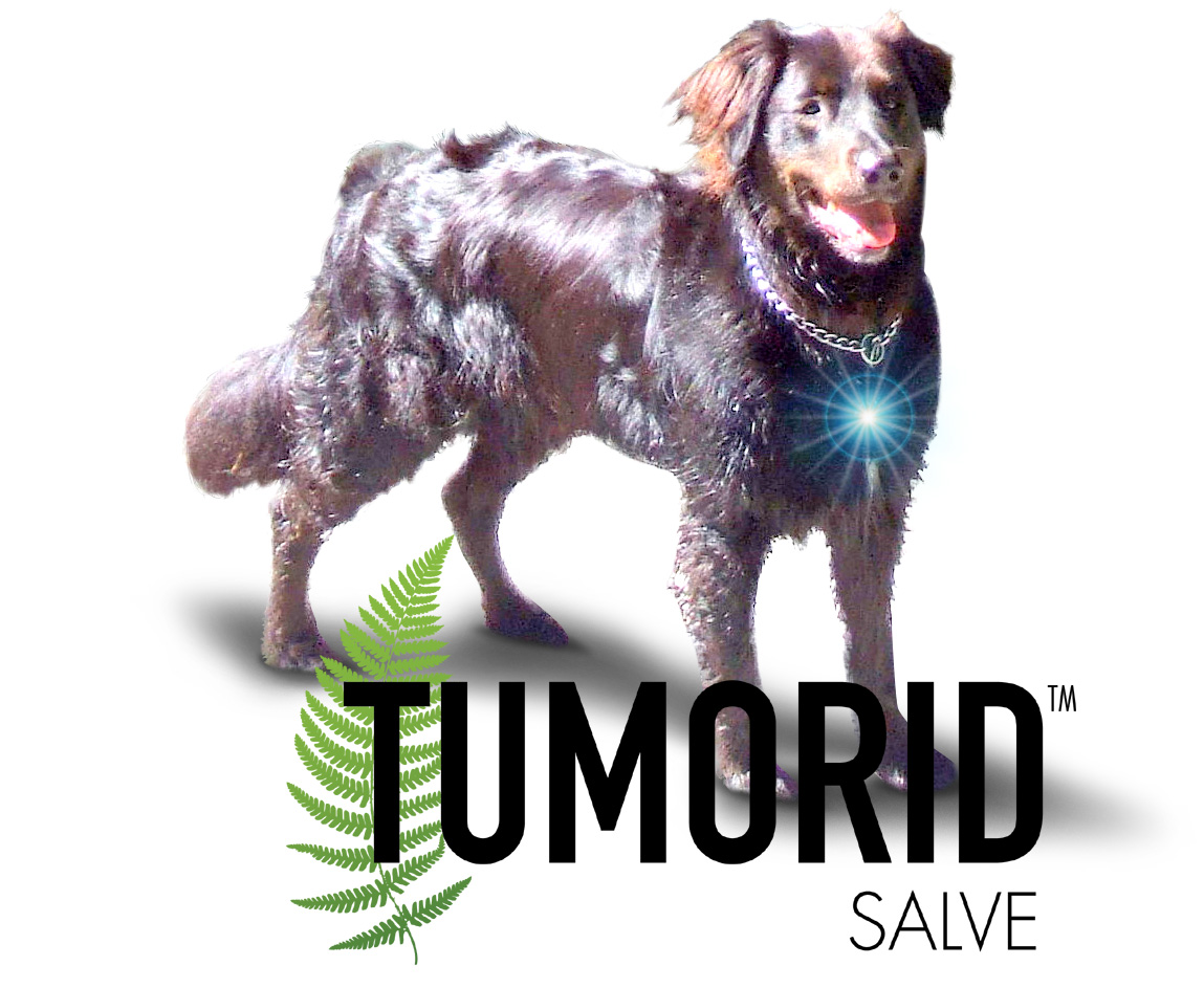 - TUMORID™, WHAT IS IT AND WHY IS IT IMPORTANT TO YOUR ANIMALS?TUMORID™ IS A SALVE THAT CAN TAKE AWAY YOUR PETS' TUMOR, WARTS, MOLES, OR SKIN TAGS BY GENTLY AND SLOWLY REMOVING THE ABNORMAL SKIN GROWTH FROM YOUR PETS. IT IS A SALVE MADE OUT OF BLOODROOT AND OTHER NATURAL HERBS, AND ITS ACTIONS ARE TARGETING THOSE UNWANTED OR ABNORMAL LUMPS AND BUMPS