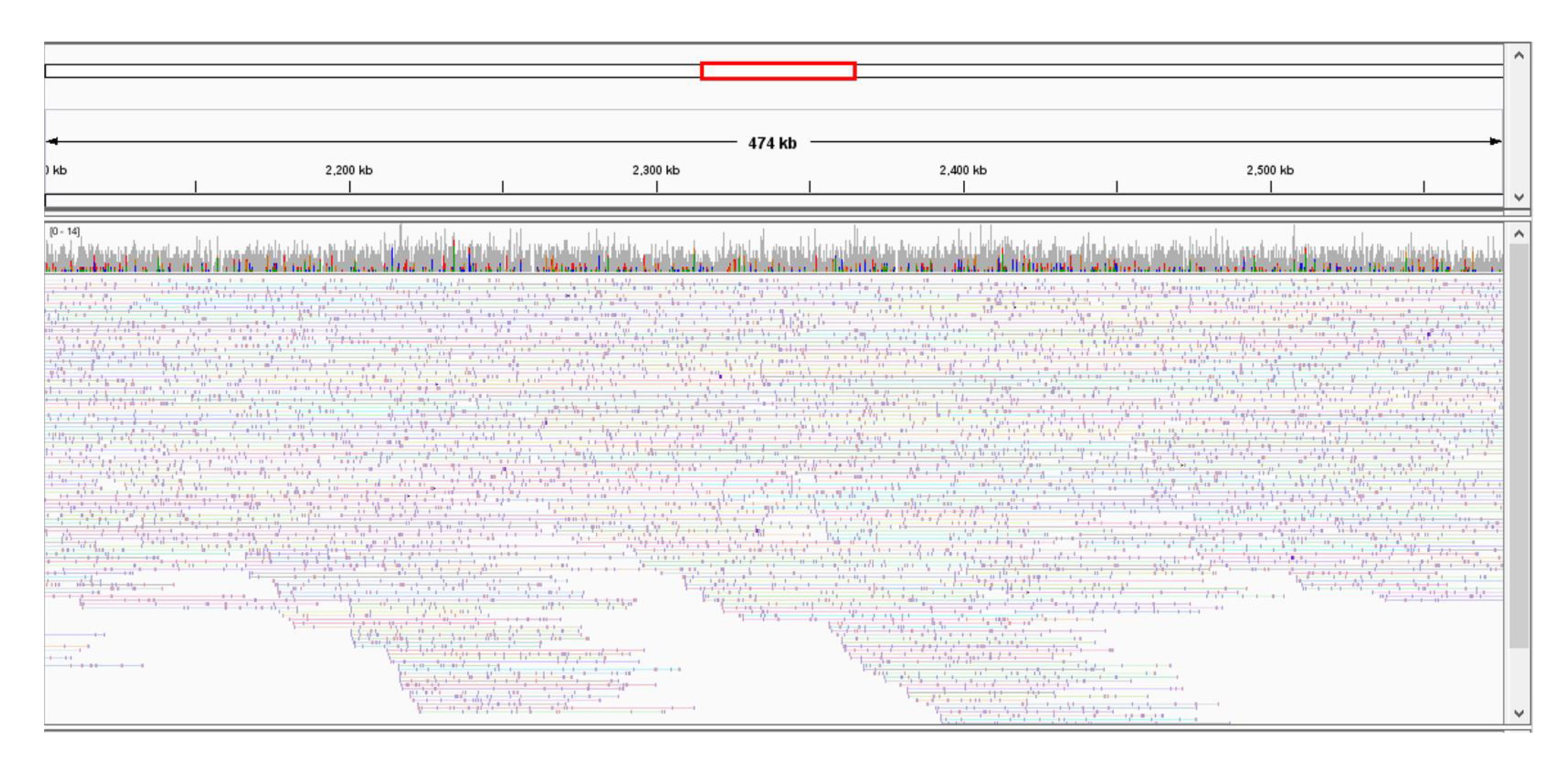 Results I: IGV Snapshot of TELL-Seq Linked Reads