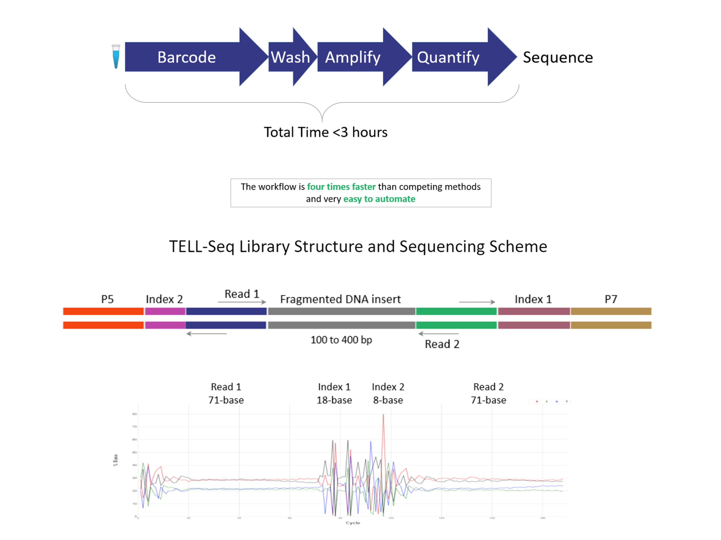 TELL-Seq Library Preparation and Sequencing Workflow