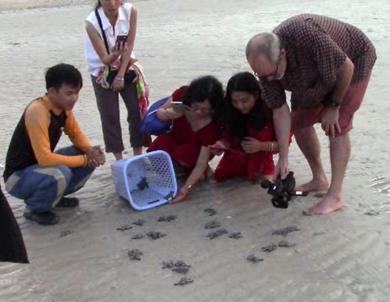 Rescued baby turtles being released by park ranger Mr. Dac (L) and filmed by Director Larry Nimmer (R)