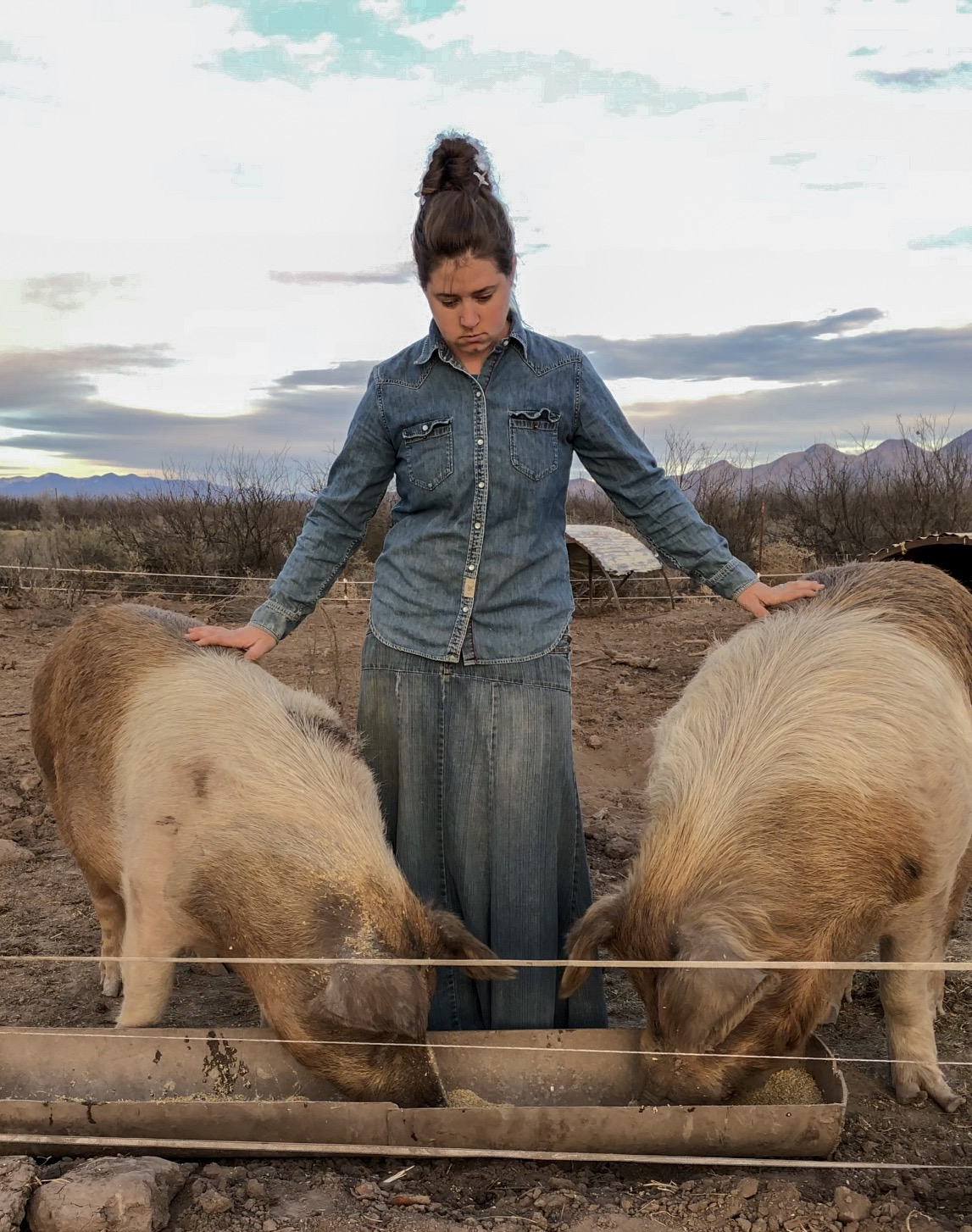 jenny-with-pigs.JPG