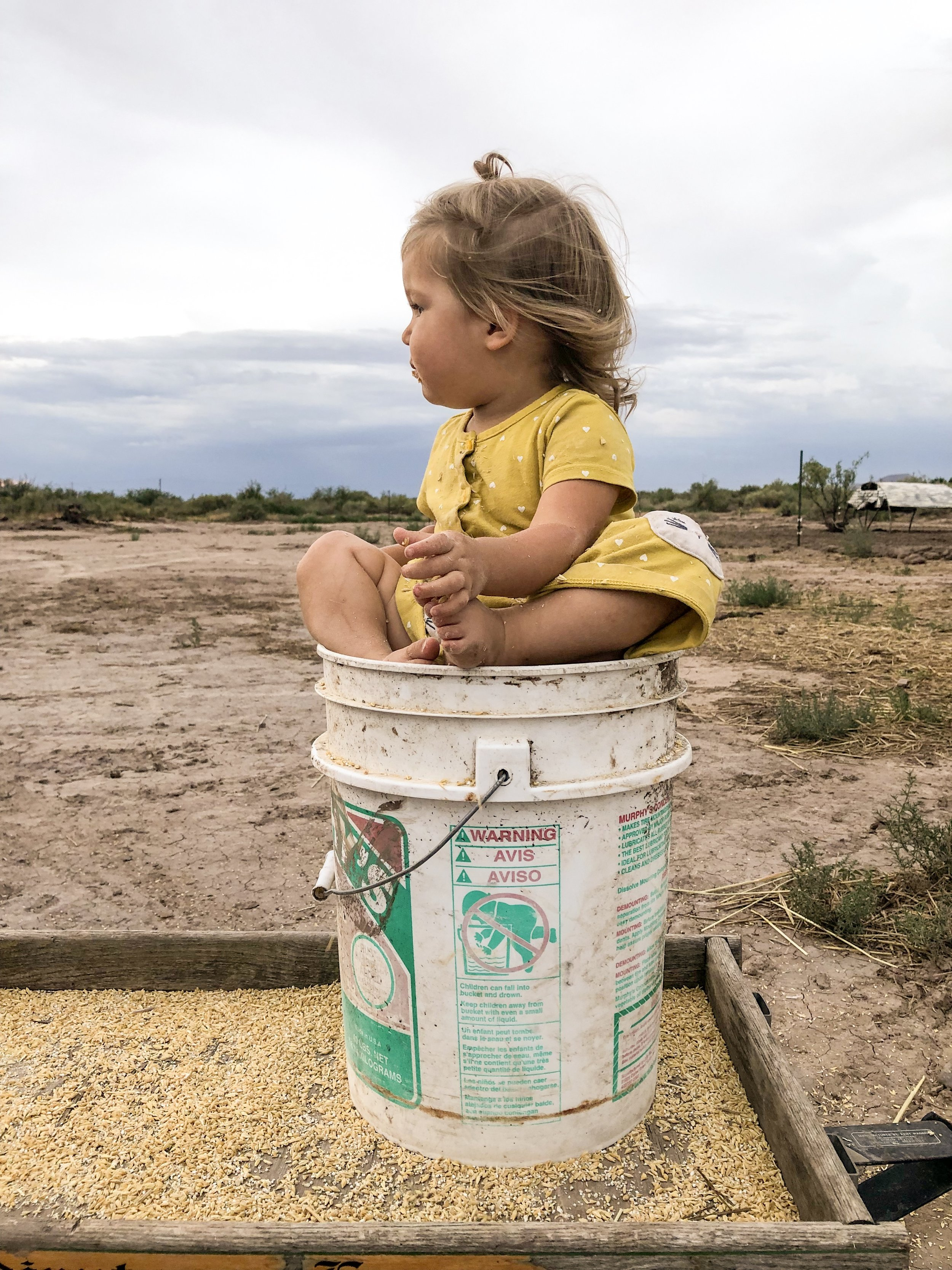 little-miss-in-bucket.JPG