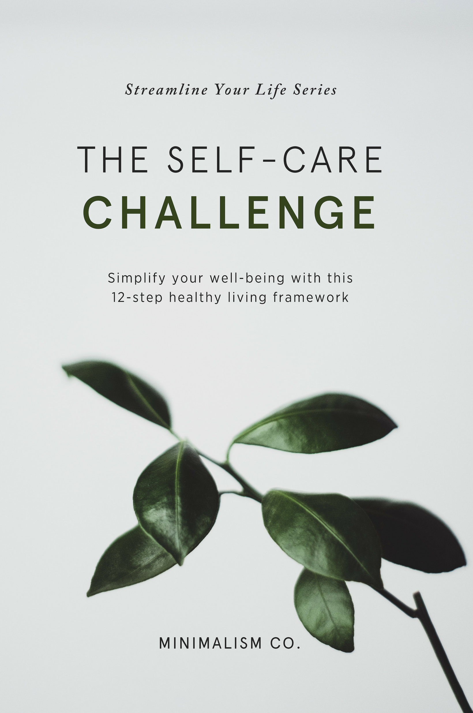 Bonus: Simplify your well-being with this 12-step healthy living framework - This holistic program is built around 12 pillars that correspond to 12 of the most important elements of health and wellness. The content in each pillar draws from both mainstream and alternative concepts and therapies and is based on science-backed studies derived from reputable health and wellness authorities.
