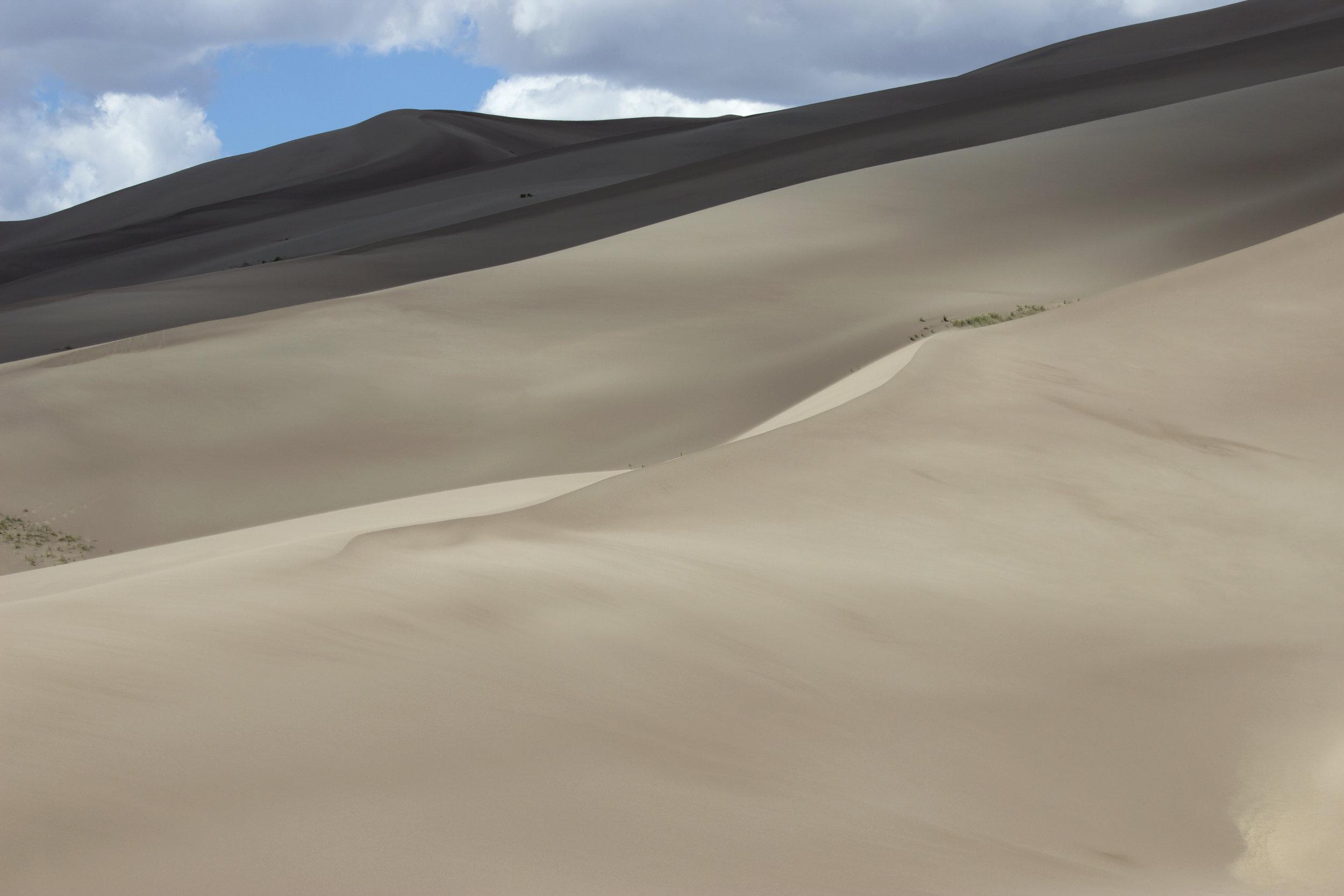 Dune Curves.jpg