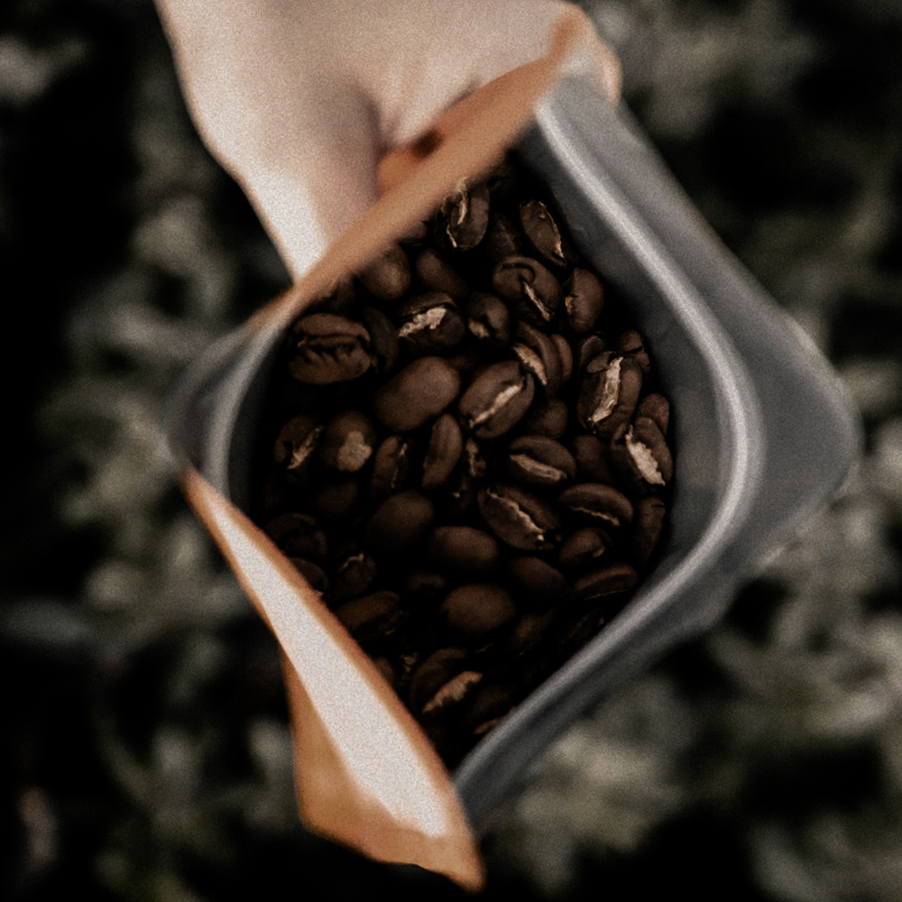 Our Coffee -