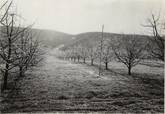 Fruitlands1.jpg