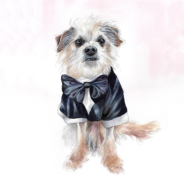 Little Leo looked so handsome in his wedding duds that he just had to be painted in them as well. I've been sitting on this painting for awhile and it was ruff! I LOVE when clients want to have fun with their paintings. ✨Let's all be like Leo this week and be our freshest, flashiest, dapperest, best selves! Happy Monday! ✨