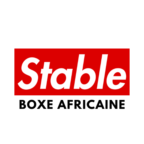 BOXE AFRICAINE.png