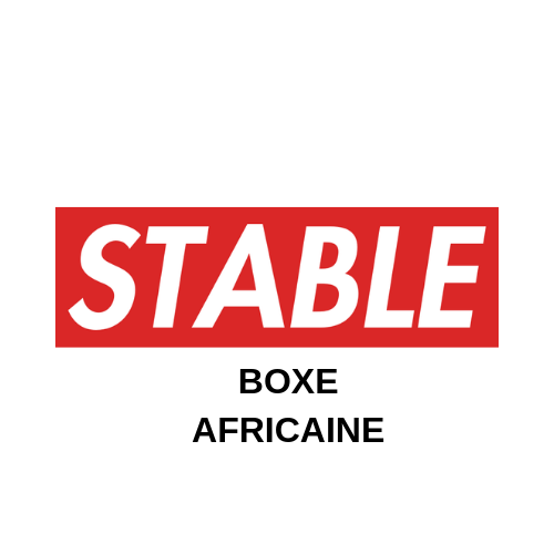 BOXE AFRICAINE (1).png