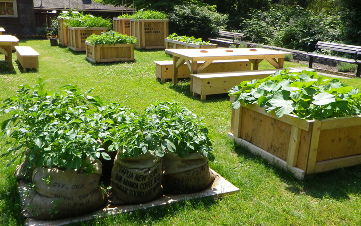 HS-Moveable_Feast__0000s_0001s_0000_MF-Garden-with-tables-July_sized.jpg