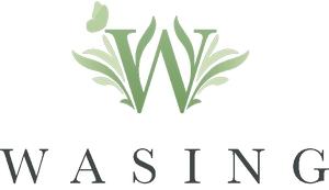 wasing-logo.jpg